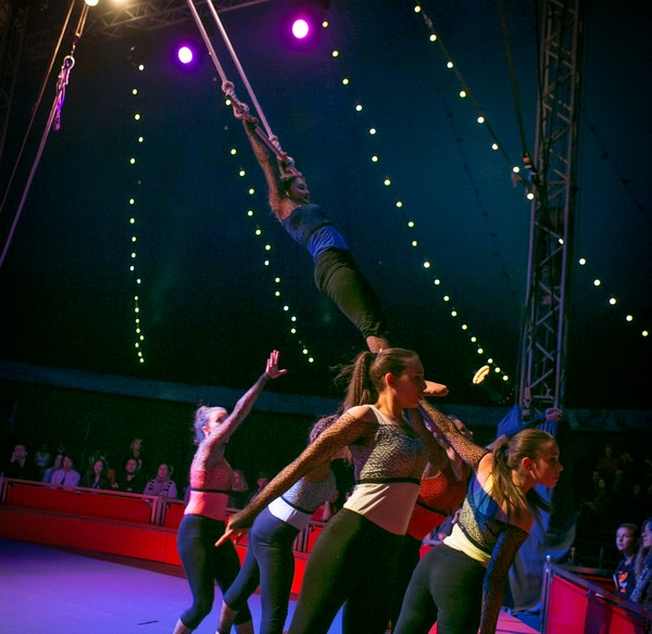 Trapeze bis